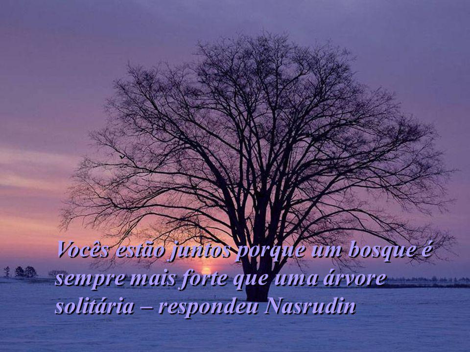 Vocês estão juntos porque um bosque é sempre mais forte que uma árvore solitária – respondeu Nasrudin