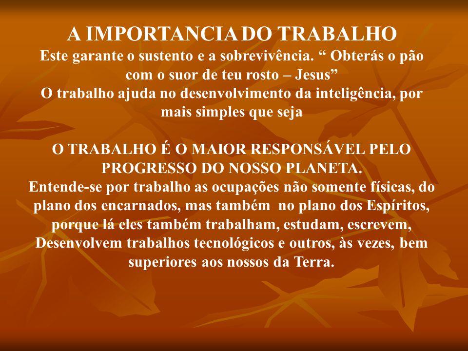 A IMPORTANCIA DO TRABALHO