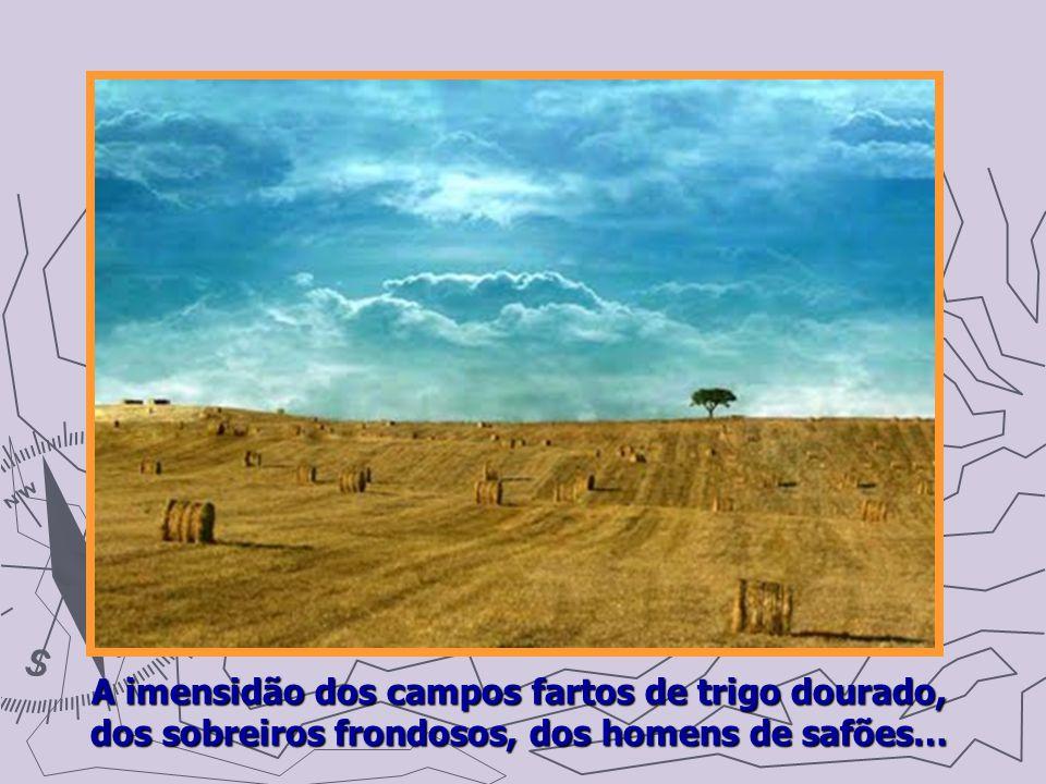 A imensidão dos campos fartos de trigo dourado, dos sobreiros frondosos, dos homens de safões…