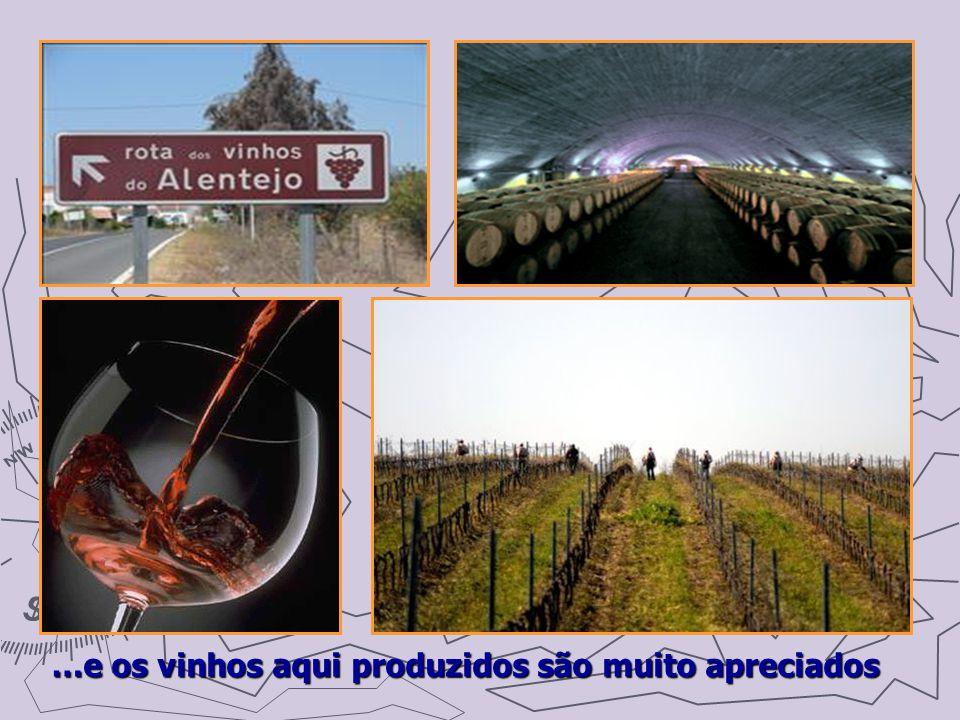 …e os vinhos aqui produzidos são muito apreciados