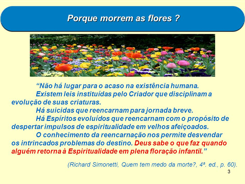 Porque morrem as flores