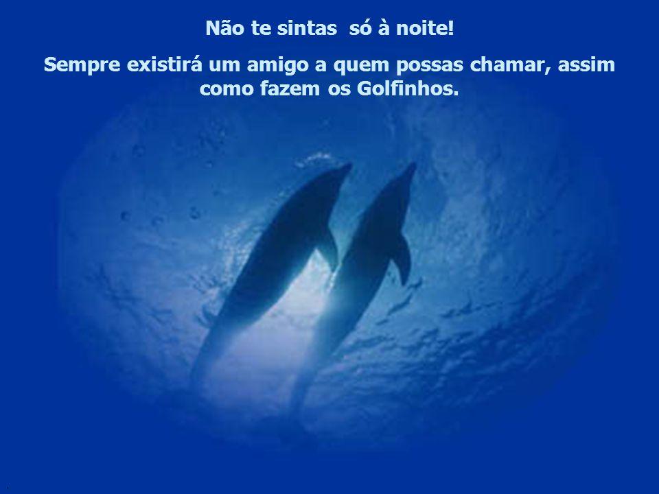 Não te sintas só à noite! Sempre existirá um amigo a quem possas chamar, assim como fazem os Golfinhos.