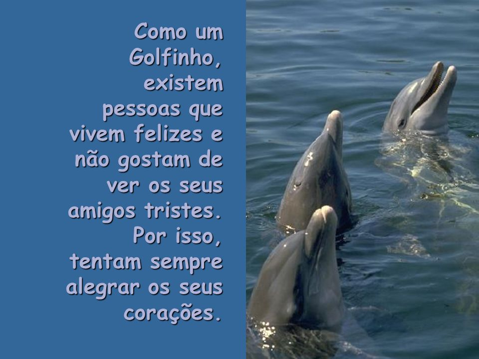 Como um Golfinho, existem pessoas que vivem felizes e não gostam de ver os seus amigos tristes. Por isso, tentam sempre alegrar os seus corações.