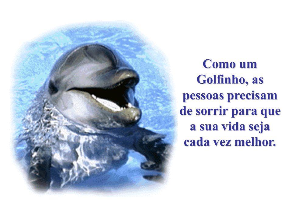 Como um Golfinho, as pessoas precisam de sorrir para que a sua vida seja cada vez melhor.