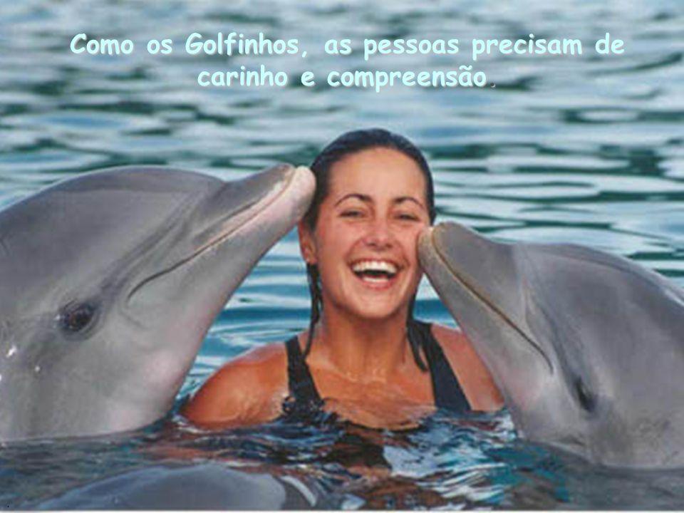 Como os Golfinhos, as pessoas precisam de carinho e compreensão.