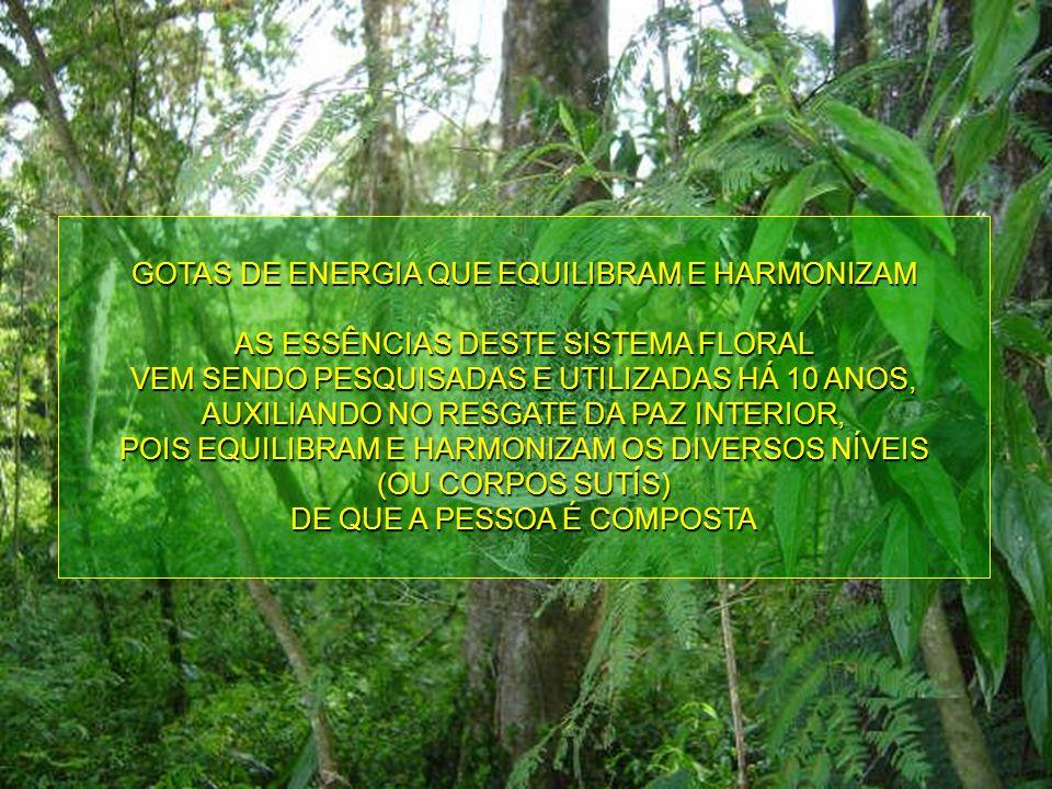 GOTAS DE ENERGIA QUE EQUILIBRAM E HARMONIZAM