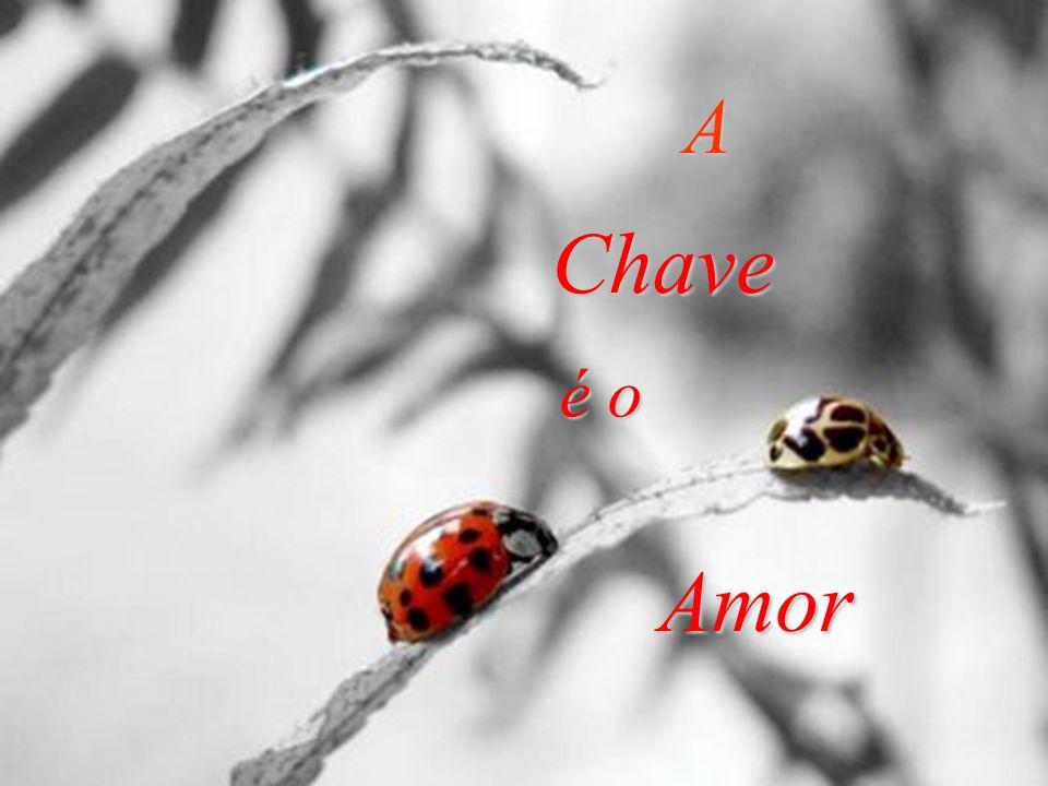 A Chave é o Amor