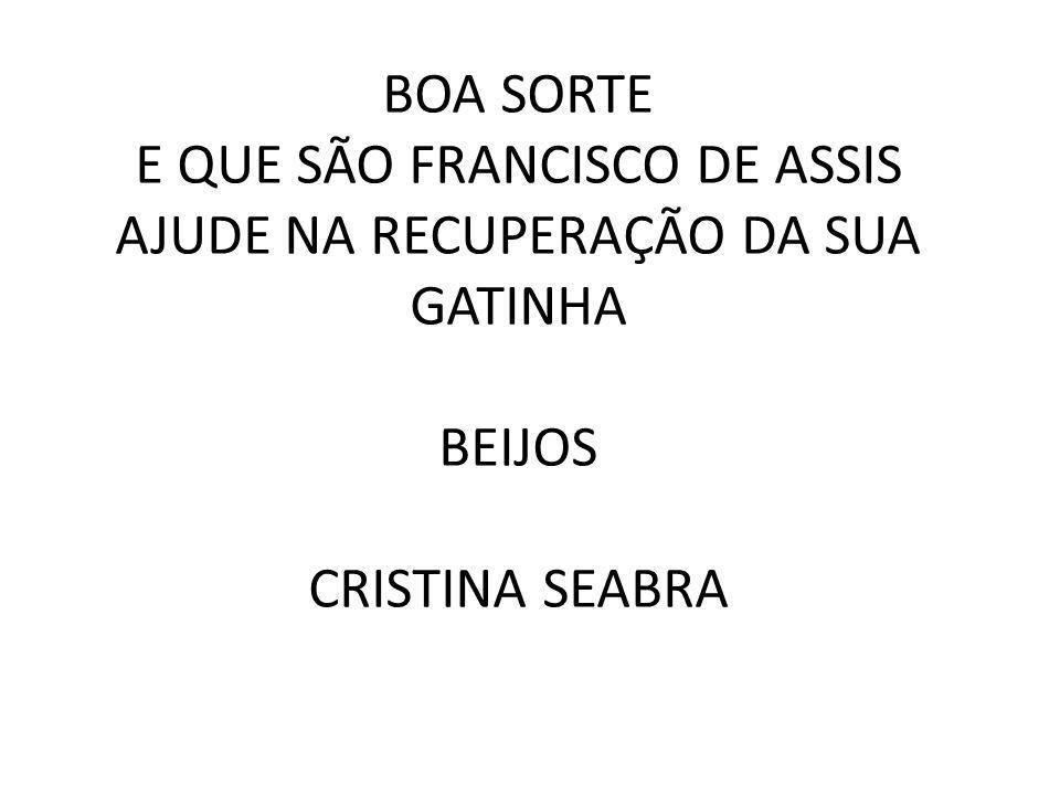 BOA SORTE E QUE SÃO FRANCISCO DE ASSIS AJUDE NA RECUPERAÇÃO DA SUA GATINHA BEIJOS CRISTINA SEABRA