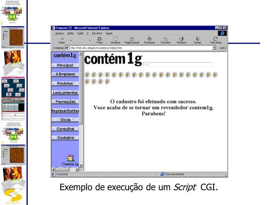 Exemplo de execução de um Script CGI.