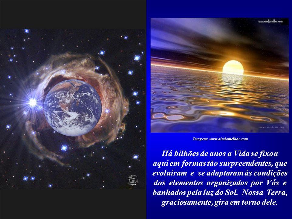 Imagem: www.aindamelhor.com Há bilhões de anos a Vida se fixou