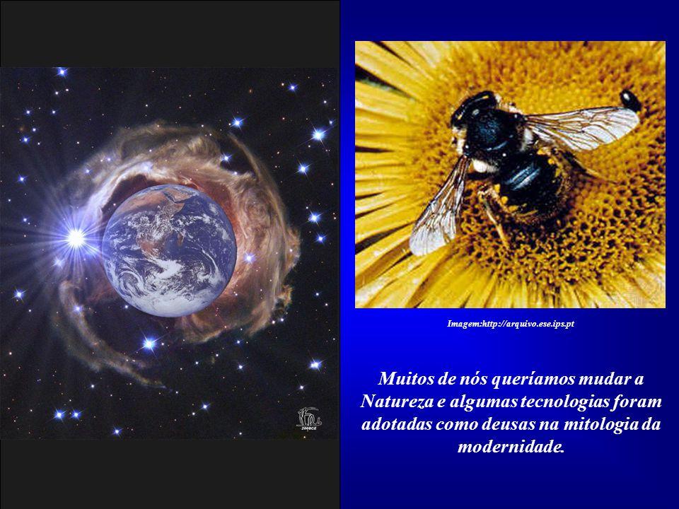 Imagem:http://arquivo.ese.ips.pt