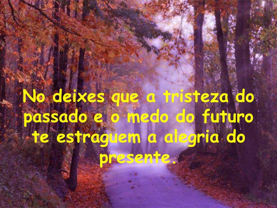 No deixes que a tristeza do passado e o medo do futuro te estraguem a alegria do presente.