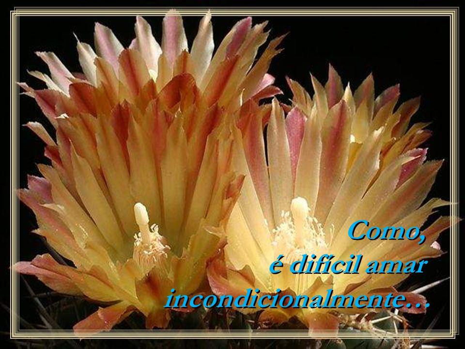 Como, é difícil amar incondicionalmente…
