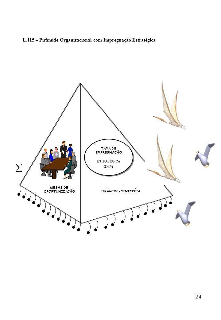  L.115 – Pirâmide Organizacional com Impregnação Estratégica TAXA DE