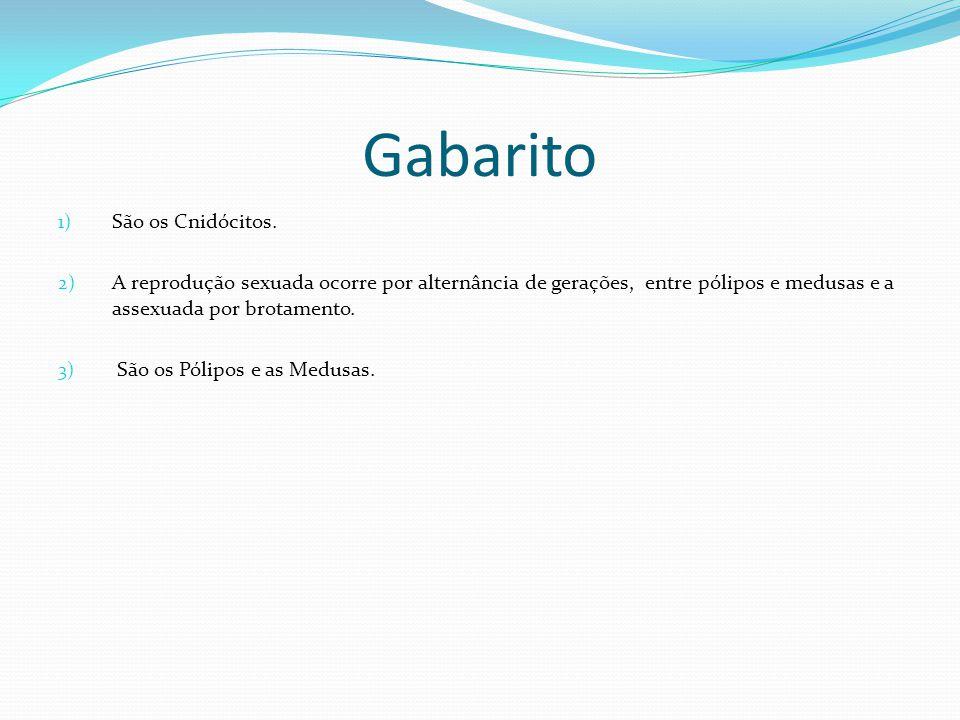 Gabarito São os Cnidócitos.