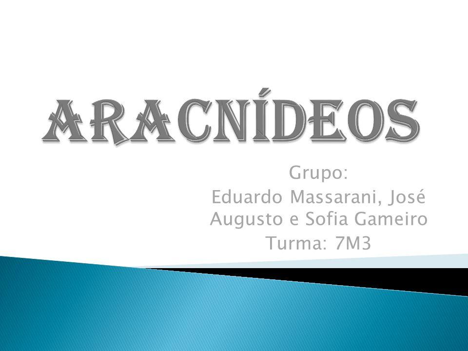 Grupo: Eduardo Massarani, José Augusto e Sofia Gameiro Turma: 7M3