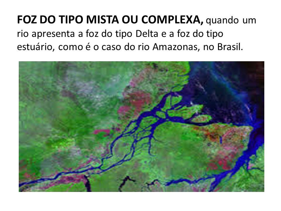 FOZ DO TIPO MISTA OU COMPLEXA, quando um rio apresenta a foz do tipo Delta e a foz do tipo estuário, como é o caso do rio Amazonas, no Brasil.