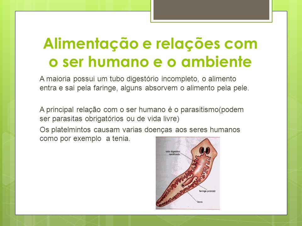 Alimentação e relações com o ser humano e o ambiente