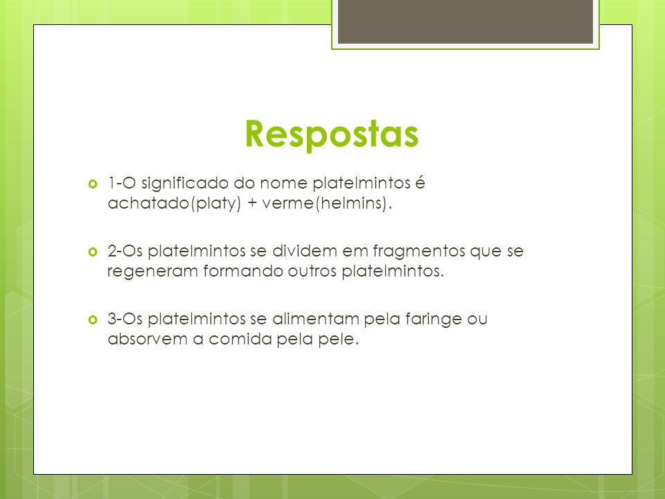 Respostas 1-O significado do nome platelmintos é achatado(platy) + verme(helmins).