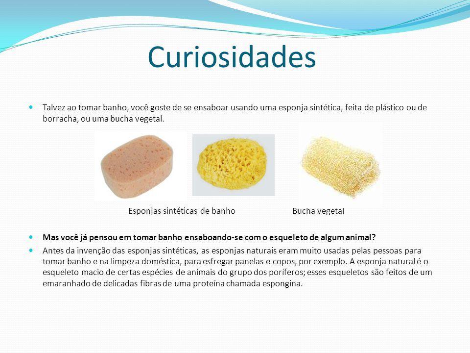Curiosidades Talvez ao tomar banho, você goste de se ensaboar usando uma esponja sintética, feita de plástico ou de borracha, ou uma bucha vegetal.