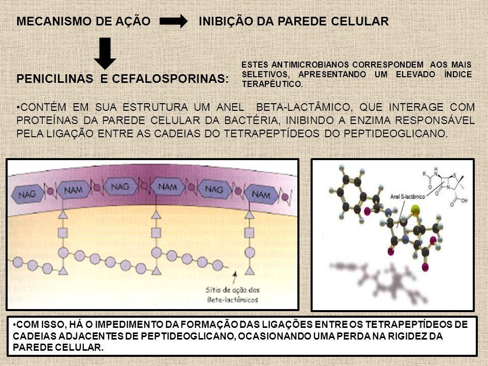 MECANISMO DE AÇÃO INIBIÇÃO DA PAREDE CELULAR