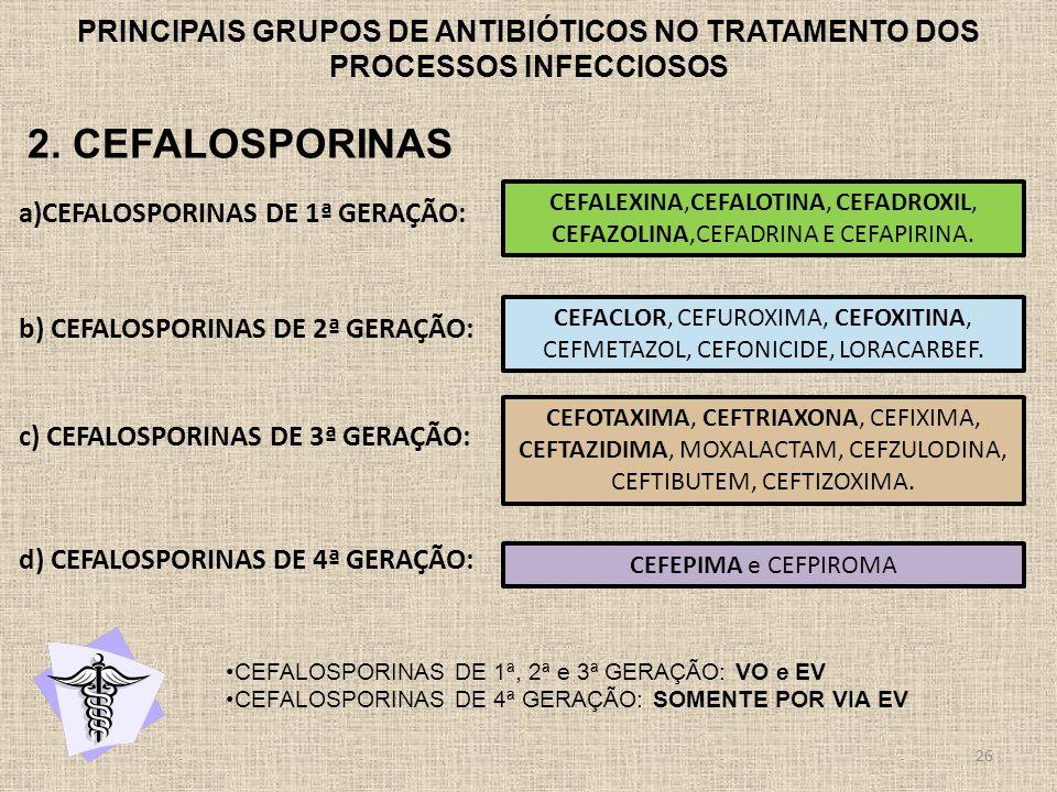 PRINCIPAIS GRUPOS DE ANTIBIÓTICOS NO TRATAMENTO DOS PROCESSOS INFECCIOSOS