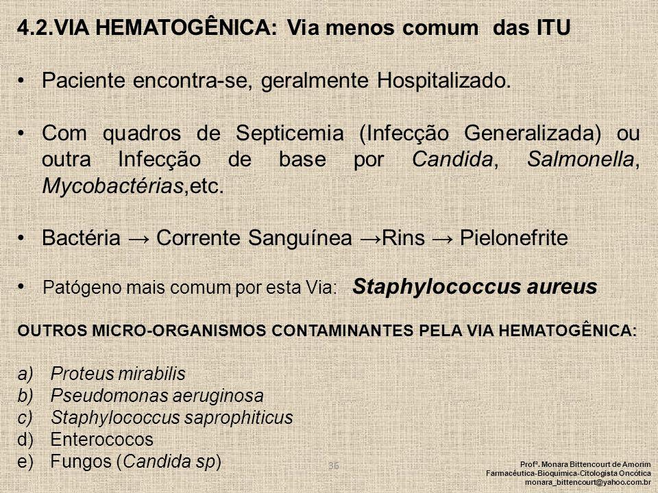 4.2.VIA HEMATOGÊNICA: Via menos comum das ITU