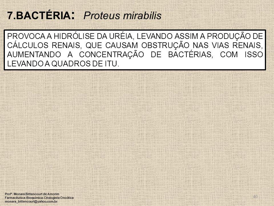 7.BACTÉRIA: Proteus mirabilis