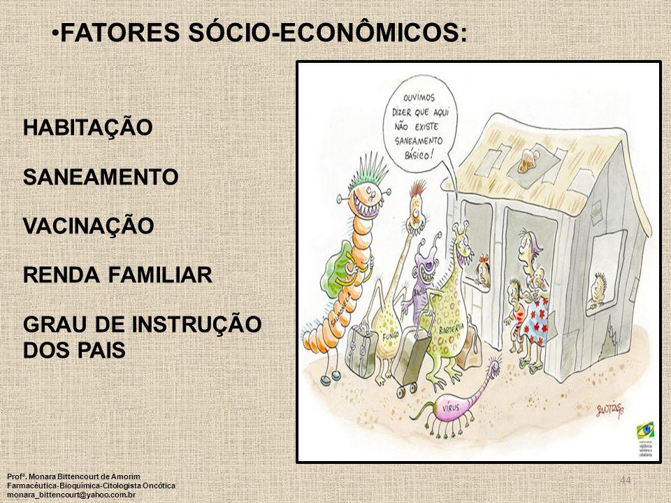 FATORES Sócio-econômicos: