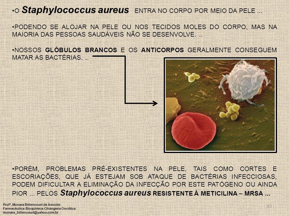 O Staphylococcus aureus entra no corpo por meio da pele ...