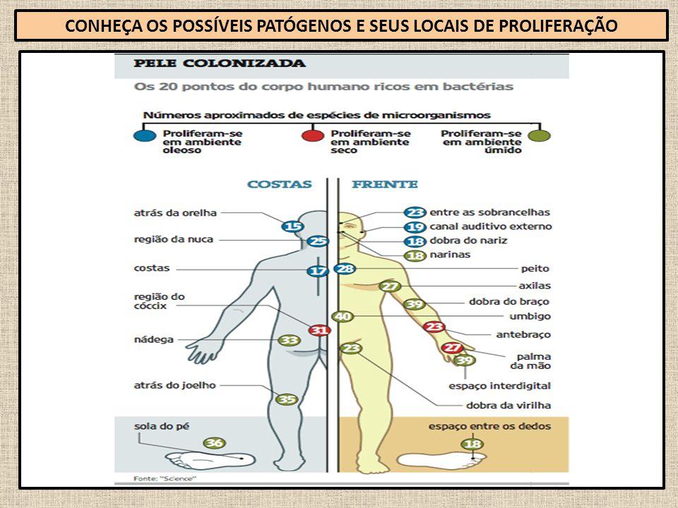 CONHEÇA OS POSSÍVEIS PATÓGENOS E SEUS LOCAIS DE PROLIFERAÇÃO