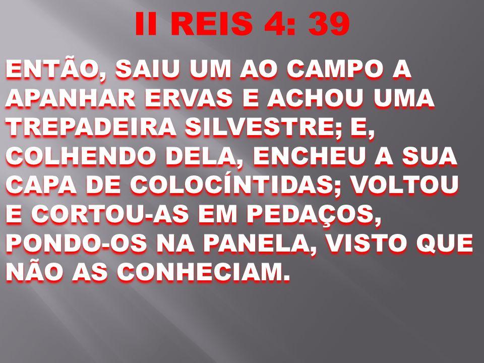 II REIS 4: 39