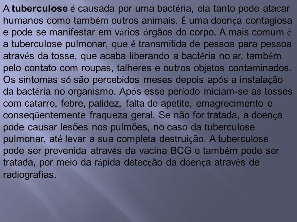 A tuberculose é causada por uma bactéria, ela tanto pode atacar humanos como também outros animais.