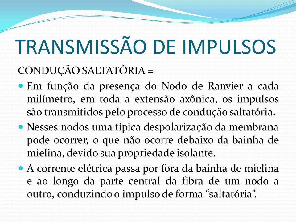 TRANSMISSÃO DE IMPULSOS