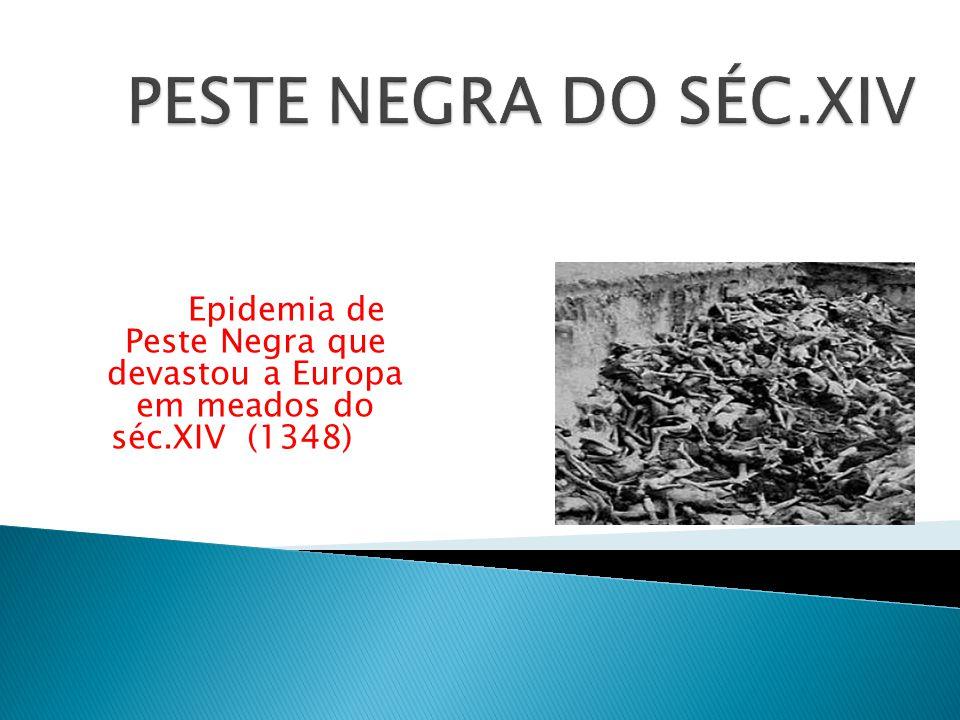PESTE NEGRA DO SÉC.XIV Epidemia de Peste Negra que devastou a Europa em meados do séc.XIV (1348)