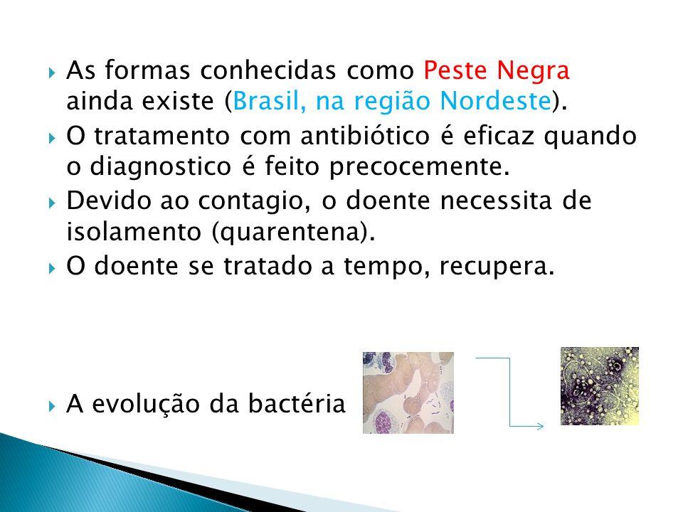 As formas conhecidas como Peste Negra ainda existe (Brasil, na região Nordeste).