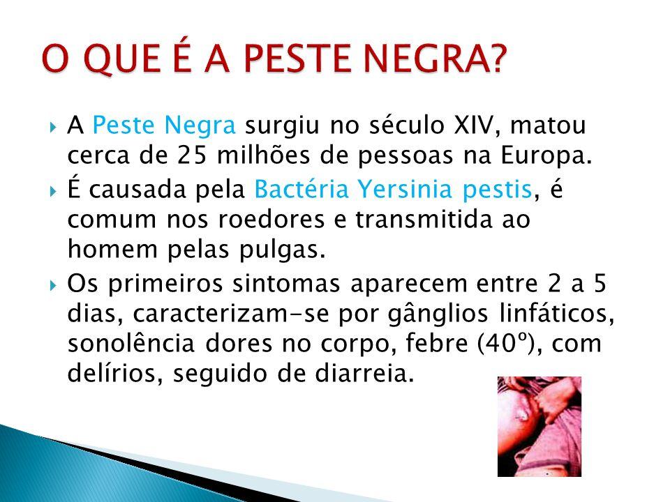 O QUE É A PESTE NEGRA A Peste Negra surgiu no século XIV, matou cerca de 25 milhões de pessoas na Europa.