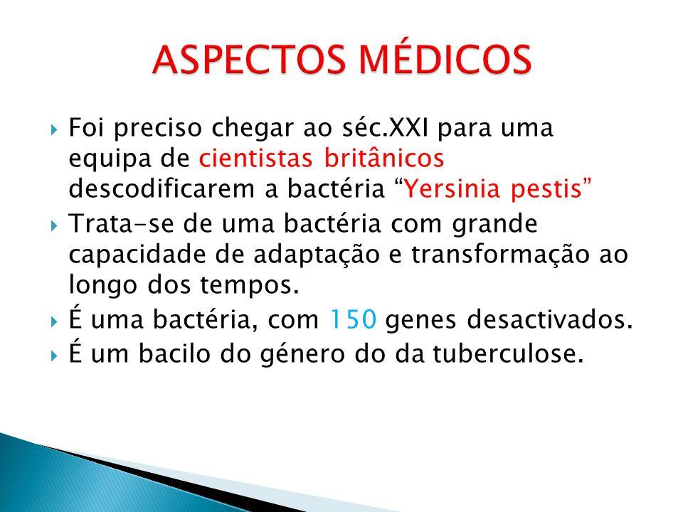 ASPECTOS MÉDICOS Foi preciso chegar ao séc.XXI para uma equipa de cientistas britânicos descodificarem a bactéria Yersinia pestis