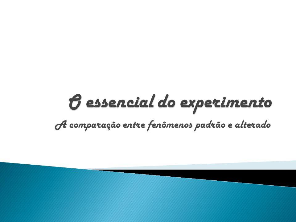 O essencial do experimento