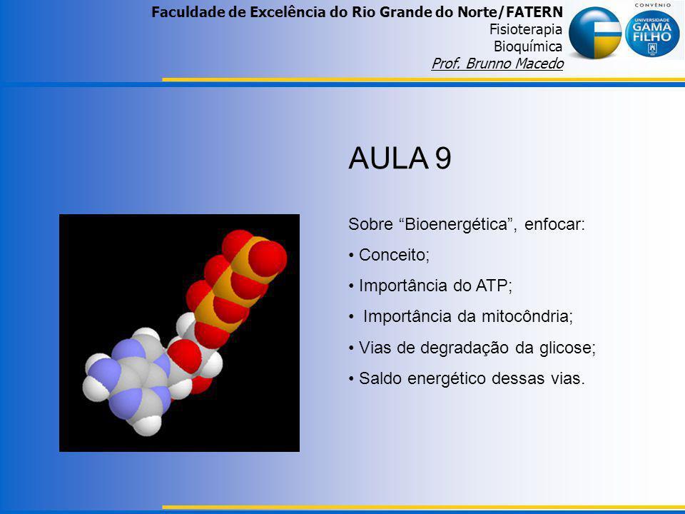 AULA 9 Sobre Bioenergética , enfocar: Conceito; Importância do ATP;