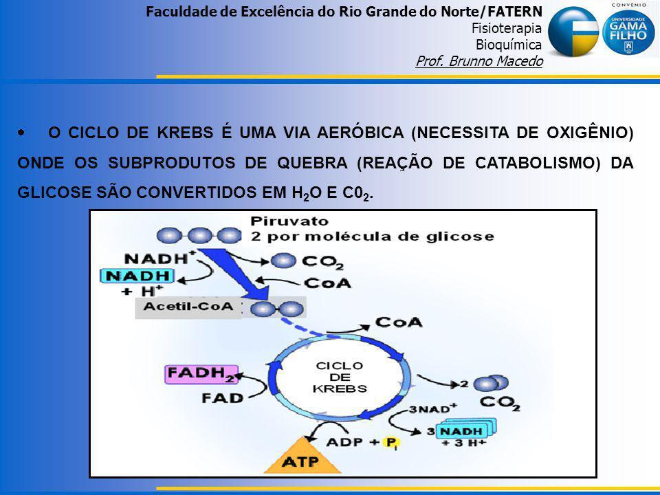 Faculdade de Excelência do Rio Grande do Norte/FATERN Fisioterapia Bioquímica Prof. Brunno Macedo