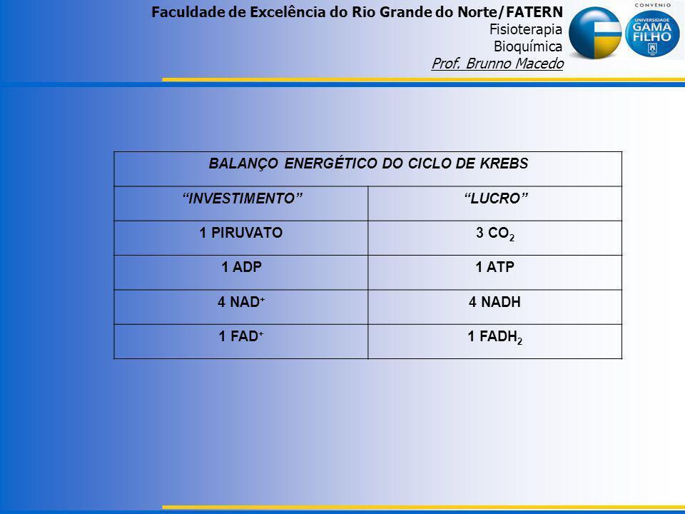 BALANÇO ENERGÉTICO DO CICLO DE KREBS