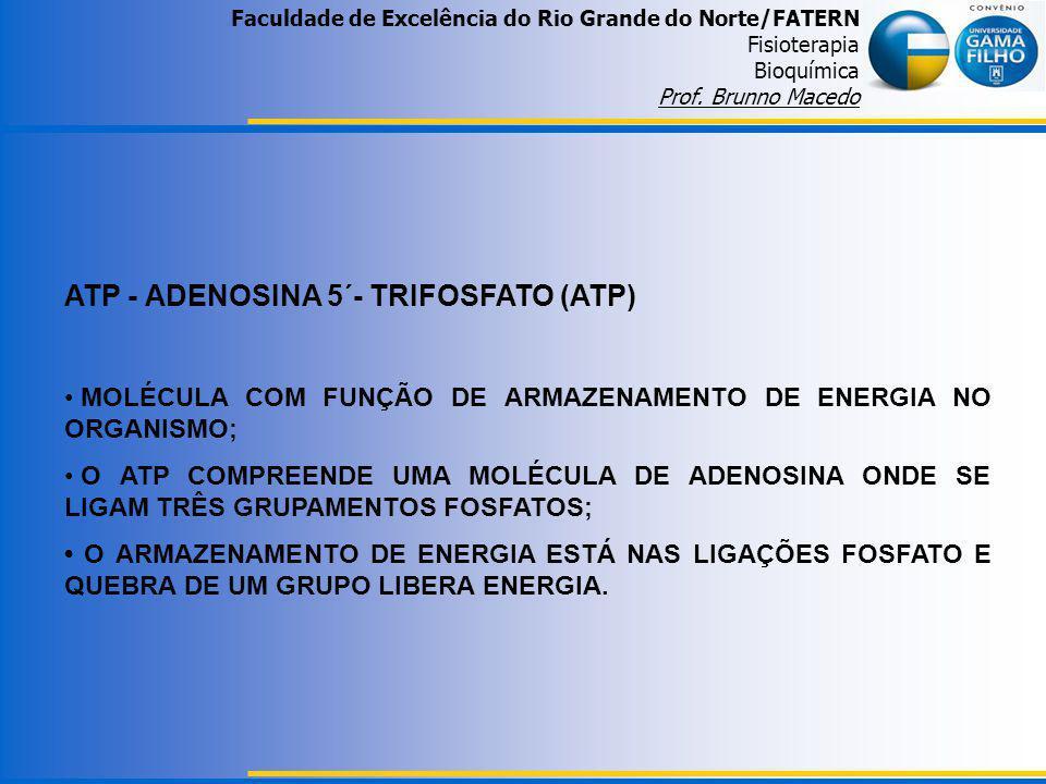 ATP - ADENOSINA 5´- TRIFOSFATO (ATP)