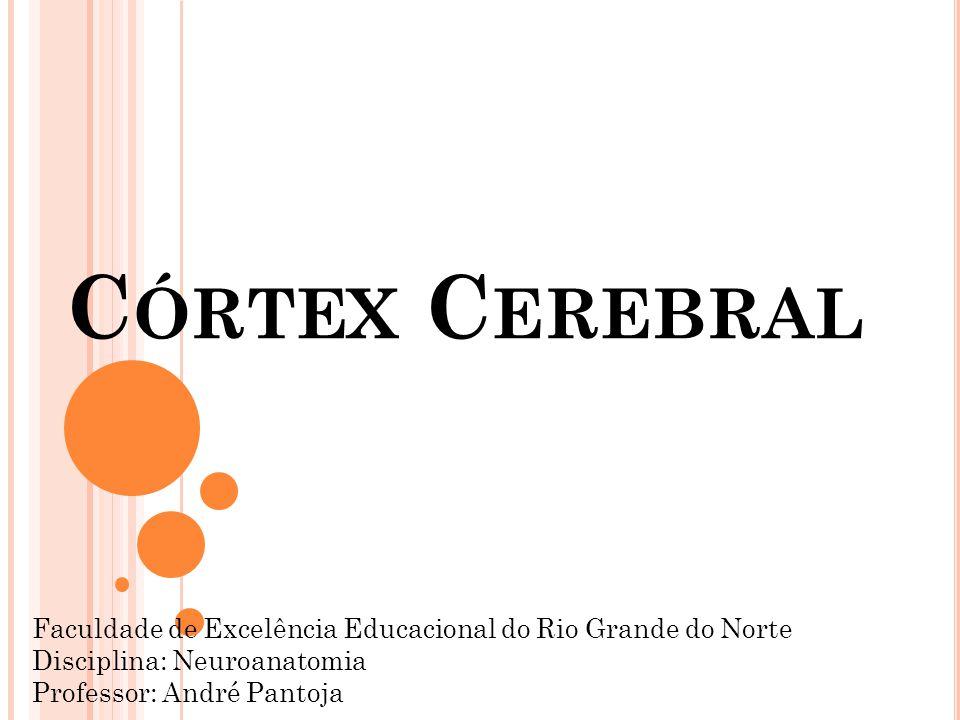 Córtex Cerebral Faculdade de Excelência Educacional do Rio Grande do Norte. Disciplina: Neuroanatomia.