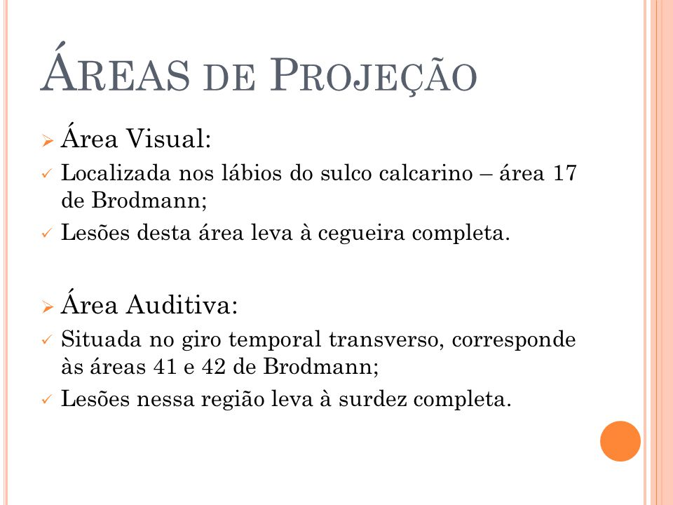Áreas de Projeção Área Visual: Área Auditiva: