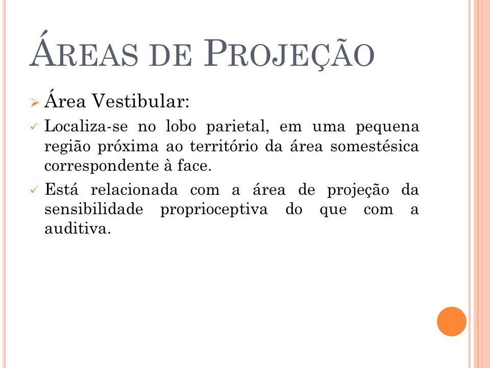 Áreas de Projeção Área Vestibular: