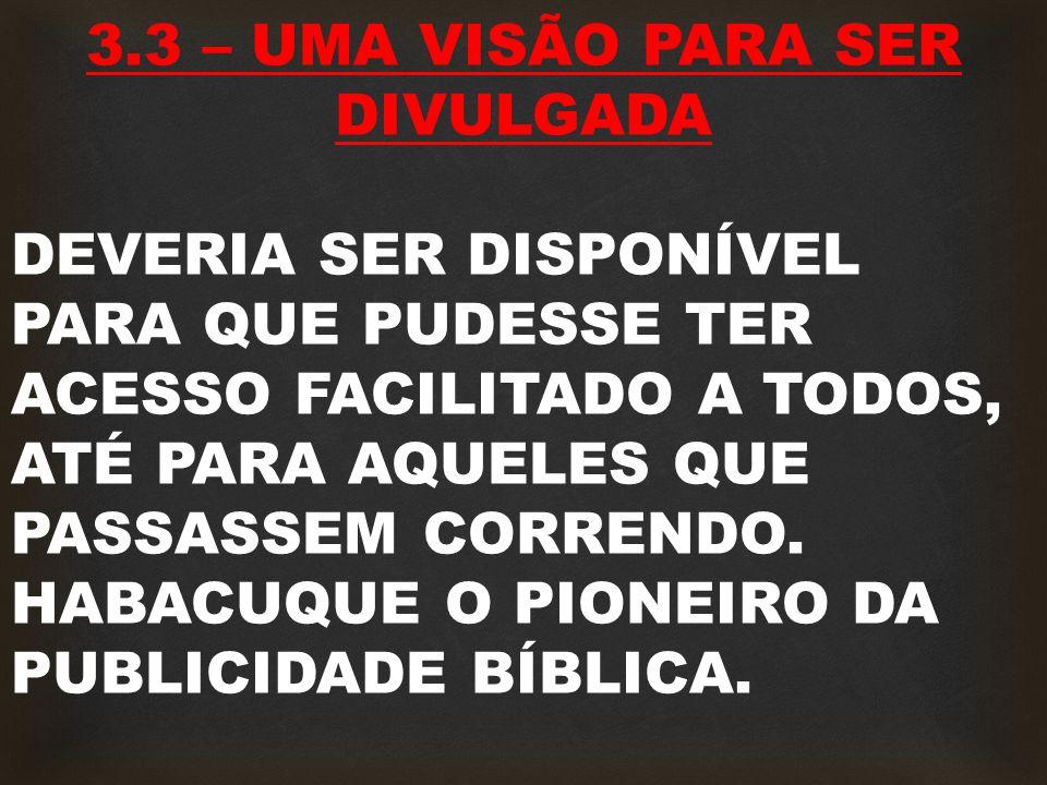 3.3 – UMA VISÃO PARA SER DIVULGADA