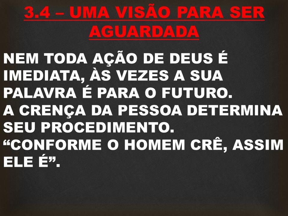 3.4 – UMA VISÃO PARA SER AGUARDADA