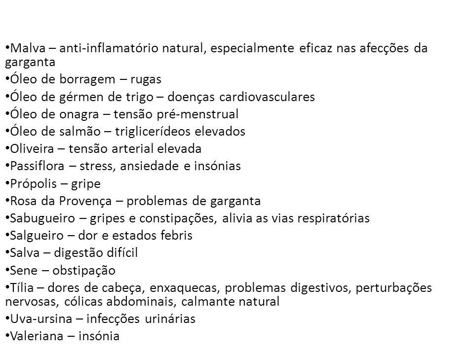 Malva – anti-inflamatório natural, especialmente eficaz nas afecções da garganta