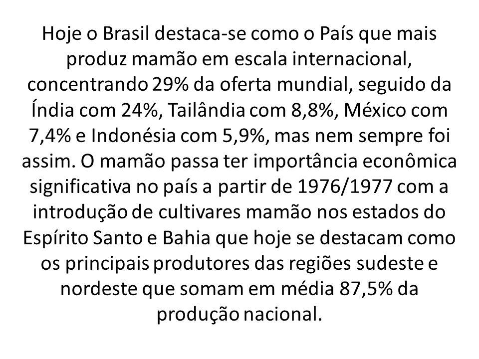 Hoje o Brasil destaca-se como o País que mais produz mamão em escala internacional, concentrando 29% da oferta mundial, seguido da Índia com 24%, Tailândia com 8,8%, México com 7,4% e Indonésia com 5,9%, mas nem sempre foi assim.